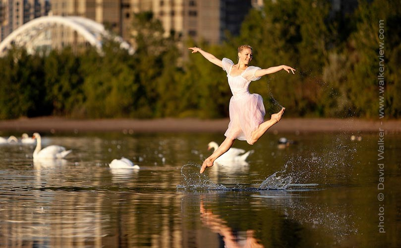 Professional dancer jumping from the lake with swans by David Walker dance photographer.